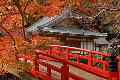 autumn temple